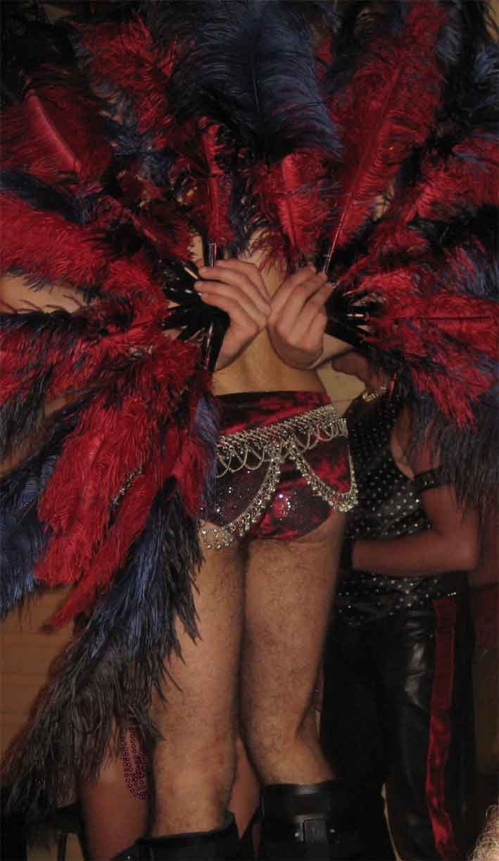 1194586686_raven_peacock_dancer